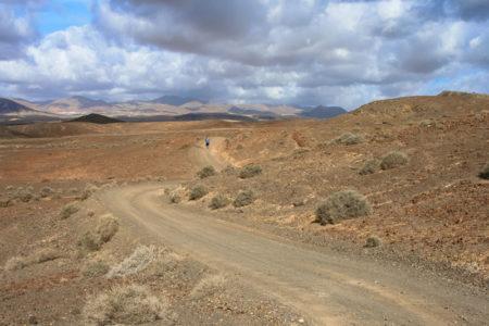"Mythos ""Long Jog"" – wie weit muss Marathontraining gehen?"