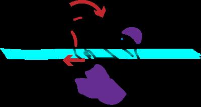 Grafik Selbstrettung im Freiwasser