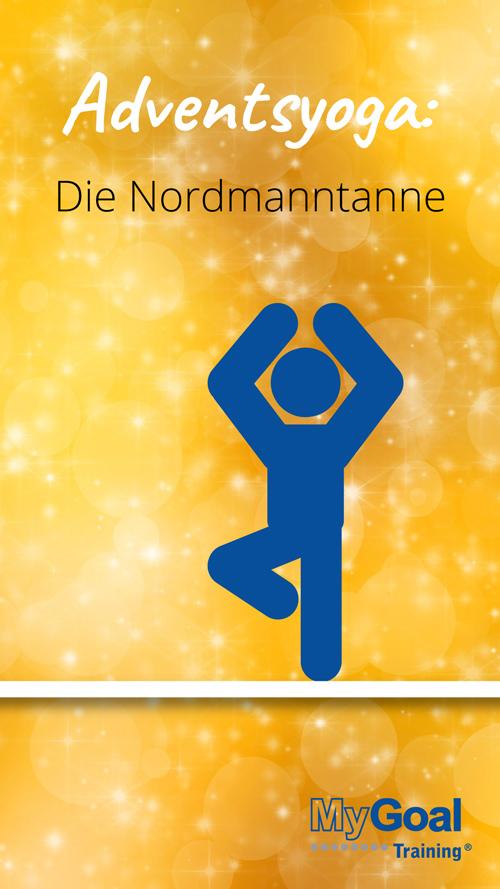 12. Türchen: Adventsyoga Nordmanntanne | MyGoal Training